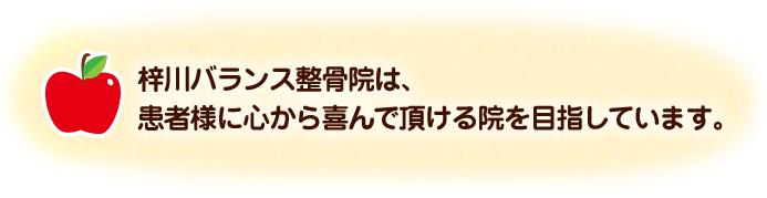 梓川バランス整骨院は、患者様に心から喜んで頂ける院を目指しています。