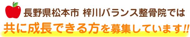 長野県松本市 梓川バランス整骨院では共に成長できる方を募集しています!